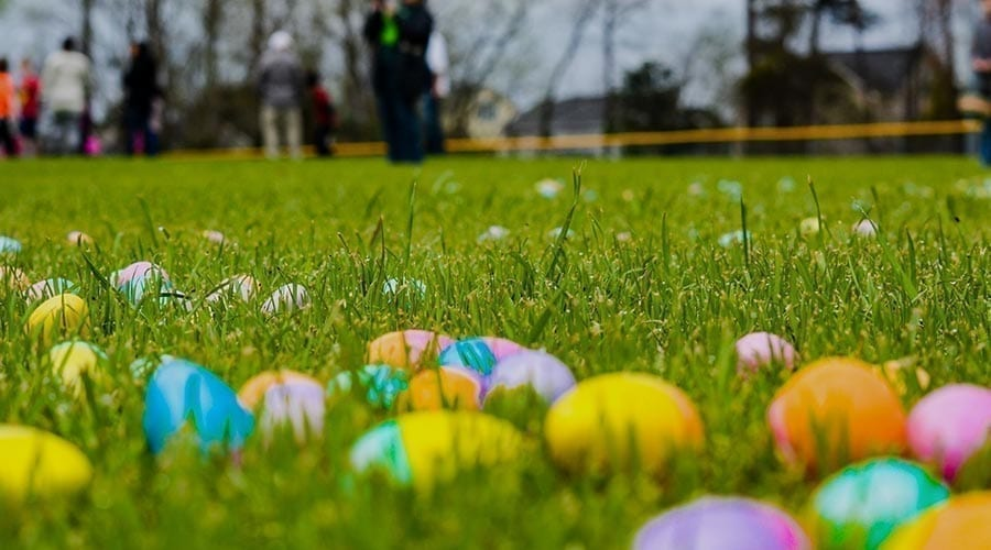 mpbc easter egg hunt